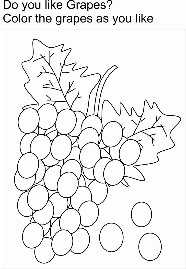 Free Coloring Pages Of Name Of Grapes