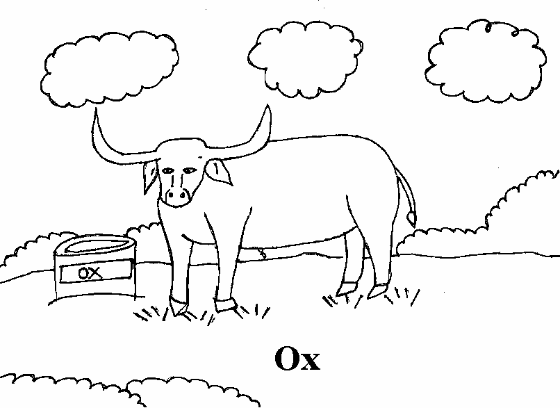 coloring pages of ox - photo#18