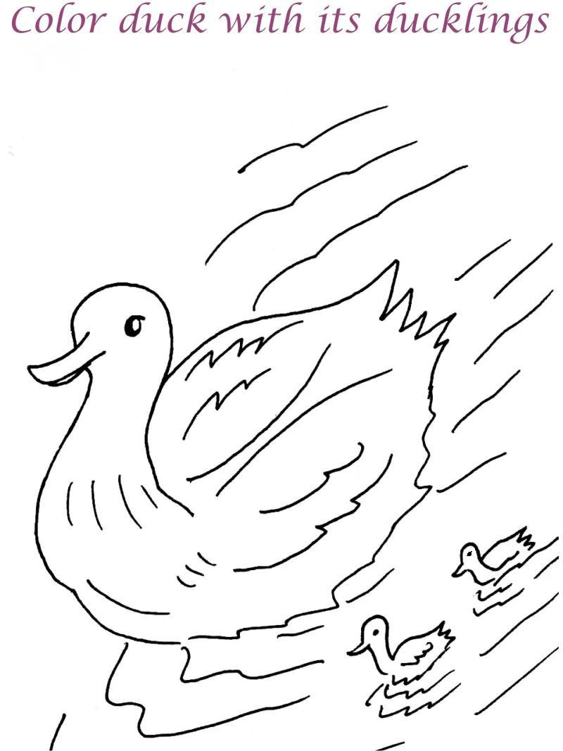 Duck Dynasty Coloring Pages