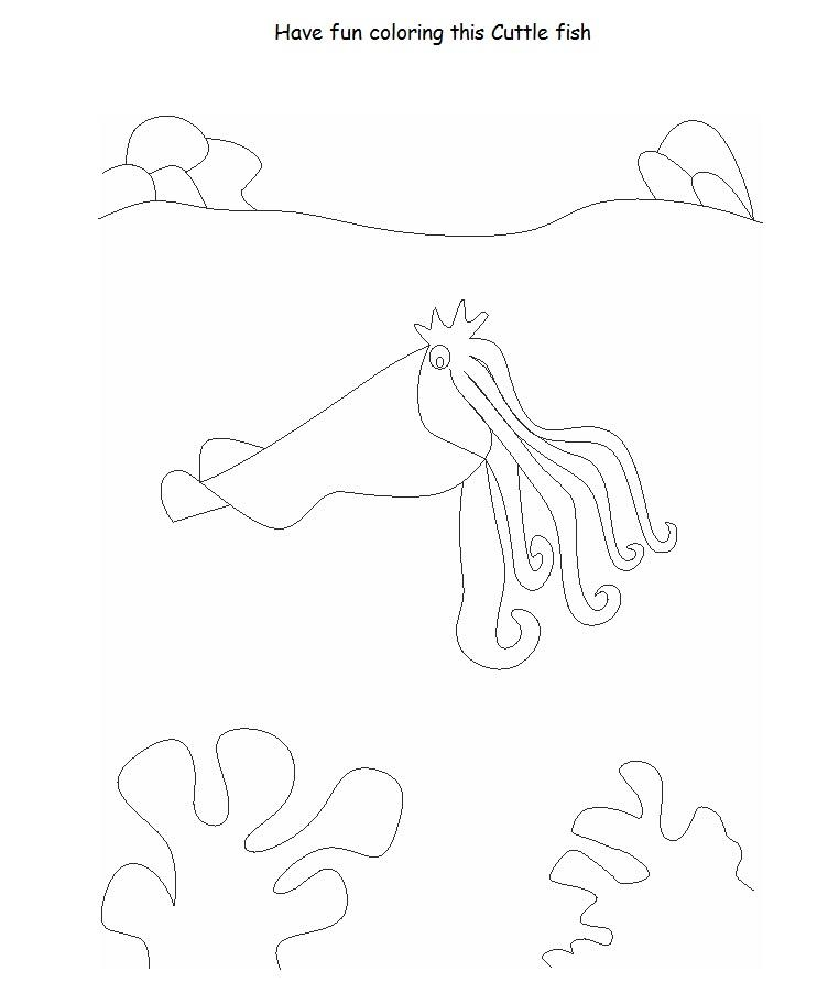 Cuttlefish Printable Coloring Page For Kids Cuttlefish Coloring Pages