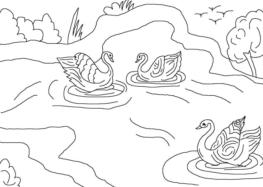 ugly duckling coloring page - photo #27